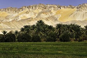 Dakhla Oasis in Egypt's Western Desert